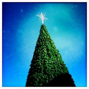 ralph-barrera-christmas.JPG